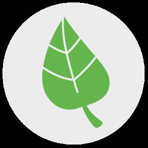 Miljö- och hälsoskydd